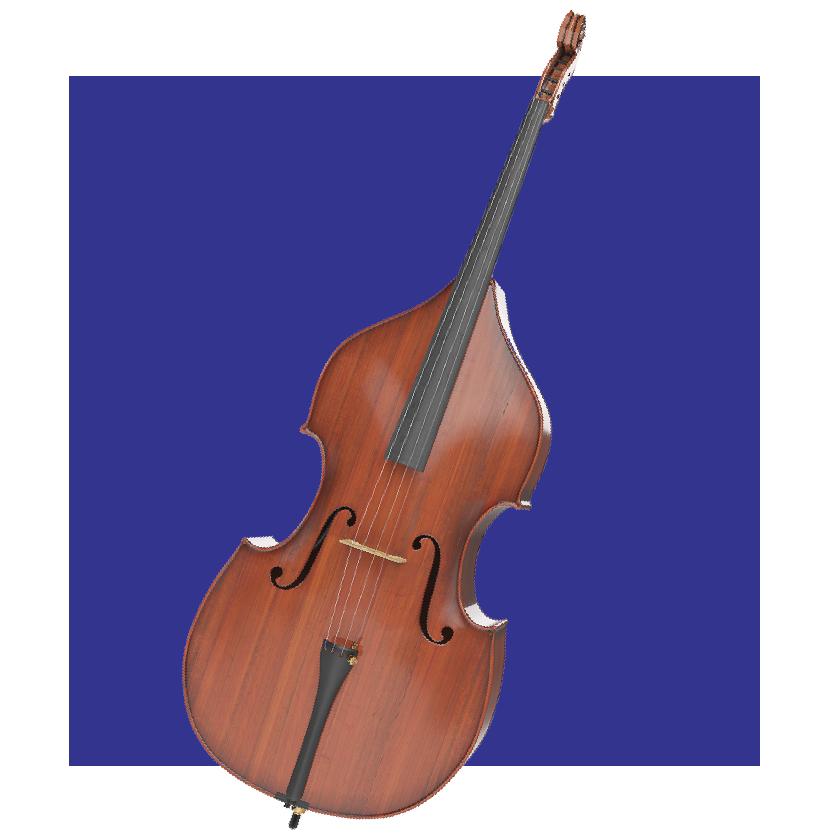 violon découvrir le festival